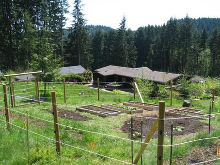 First 5R Farm Veggie Garden