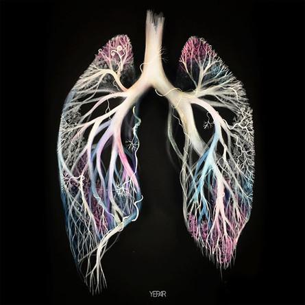 _Todo respira, vive, fluye__la luz en su