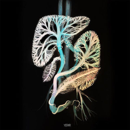 Digestive system in color !!_._._._.jpg