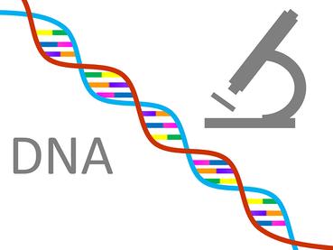 what is DNA :# the best DNA test, How to do DNA testing |HHINDI