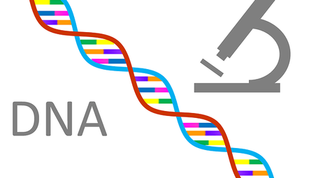 what is DNA :# the best DNA test, How to do DNA testing  HHINDI