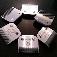Clipper blades, large and giant breed dog grooming