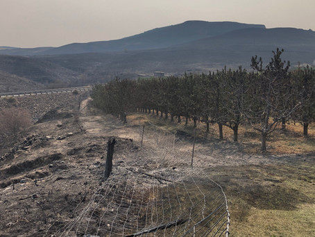 Wildfire Impact on Farming in Washington