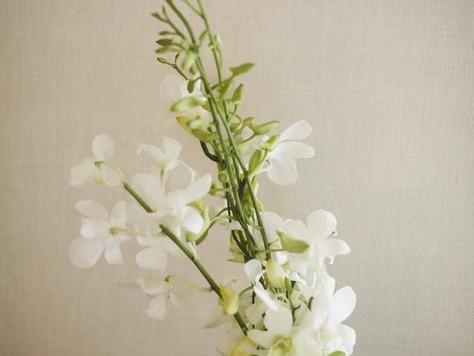 Unique Wedding Flower Bouquet: Dendrobium Orchids