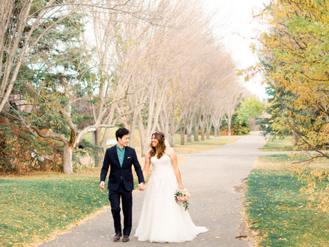 Calgary Wedding Photographer: Bow River's Baker Park Fall - Video Clip