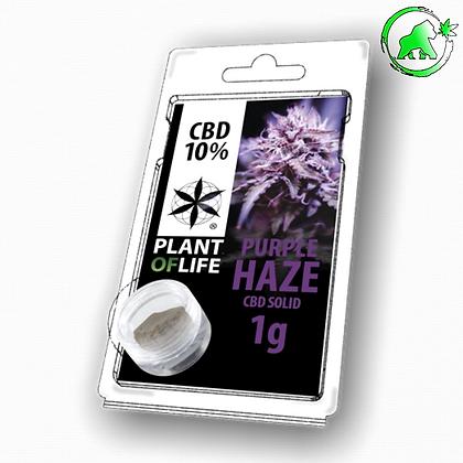 RESINE CBD PURPLE HAZE 10% 1G PLANT OF LIFE