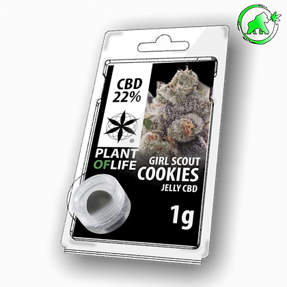 RESINE CBD GIRL SCOUT COOKIES 22% 1G PLANT OF LIFE