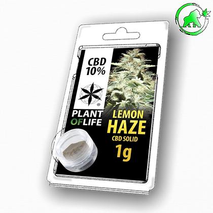 RESINE CBD LEMON HAZE 10% 1G PLANT OF LIFE