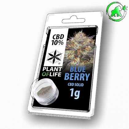 RESINE CBD BLUE BERRY 10% 1G PLANT OF LIFE