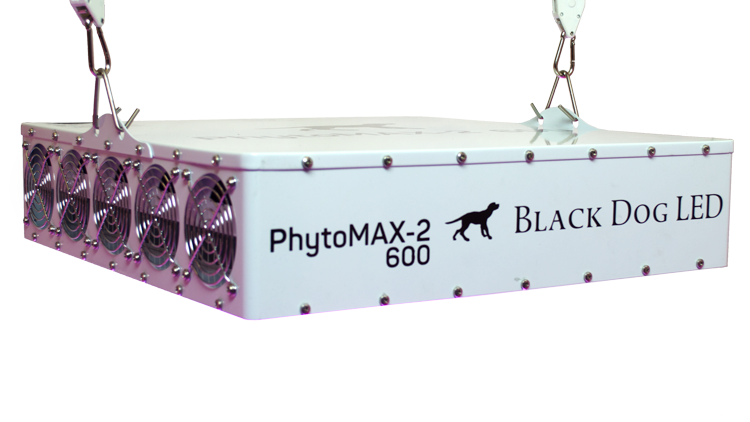PM600