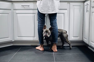 tile and grout woman and dog.jpg