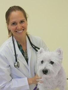 Dr Eisenschenk Pet Dermatologist_edited.