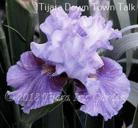 Tijara Down Town Talk