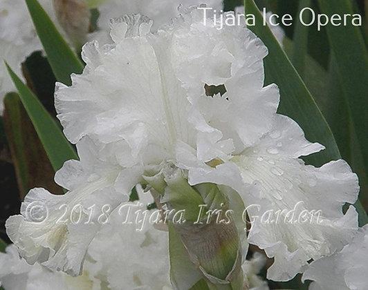 Tijara ice Opera