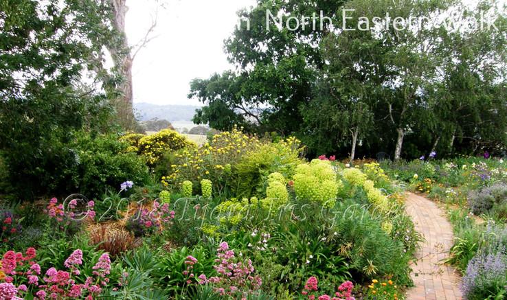 Garden  North Eastern Walk.JPG