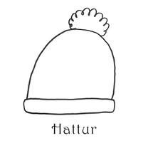 hattur.jpg
