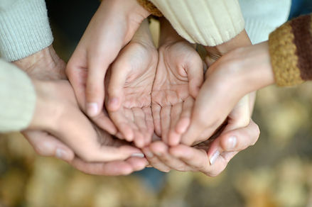 Four sets of hands cradling each other representing four generations.