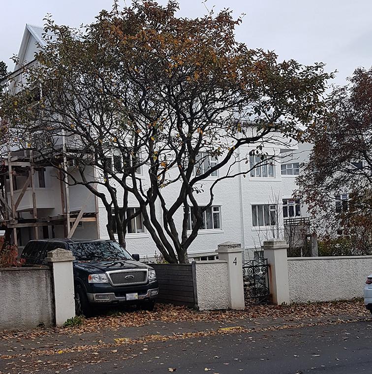 Hulda's House in Reykjavík