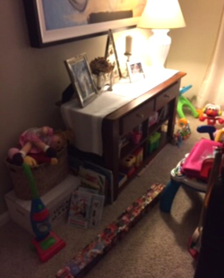 Toy storage living room