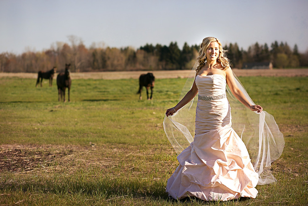Rustic romantic wedding horses