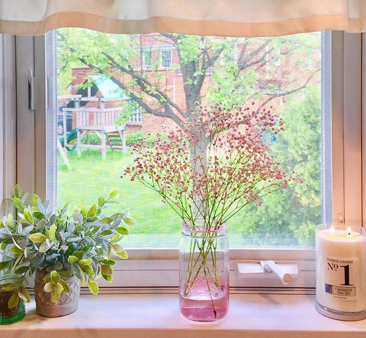 Pink baby's breath in mason jar potted greenery on windowsill