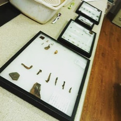 Artifacts on Display