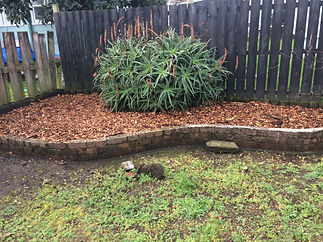 Garden bed 2.JPG