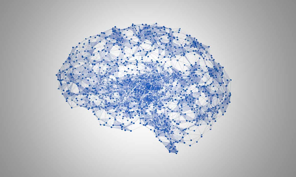 """From article, """"Computer-generated image of a brain. The team found the accuracy of the latest system was far higher than previous approaches. Photograph: Jezper/Alamy"""""""