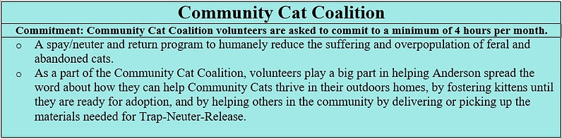Community Cat Coalition.jpg