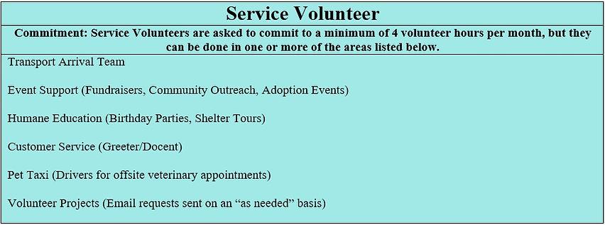 Service Volunteer.jpg