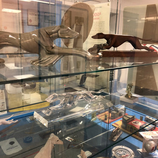 Museum dog collection