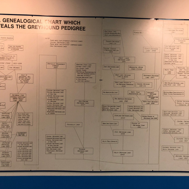 Greyhound Company Genealogy