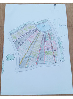 03 Microfarm Sketch