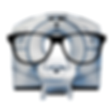 CTQI-Logo.png