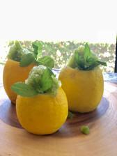 Lemon mint granita