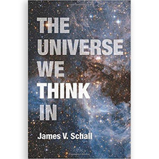 THE UNIVERSE WE THINK IN