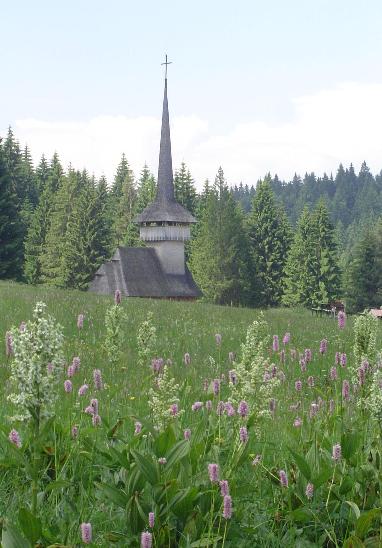 Poiana church