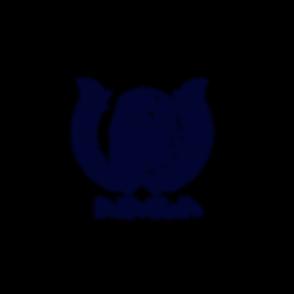 PNG - Dark Blue.png