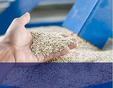 rice-mill-boiler.jpg