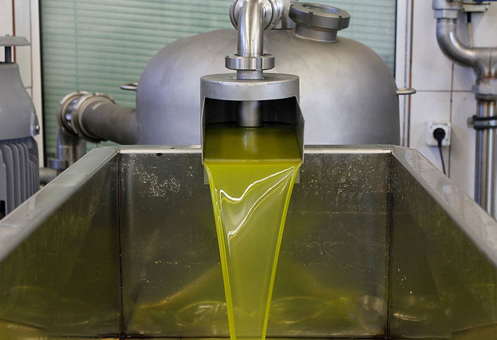 olive-oil-extraction-factory.jpg