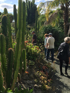 Austen's Exotic Gardens