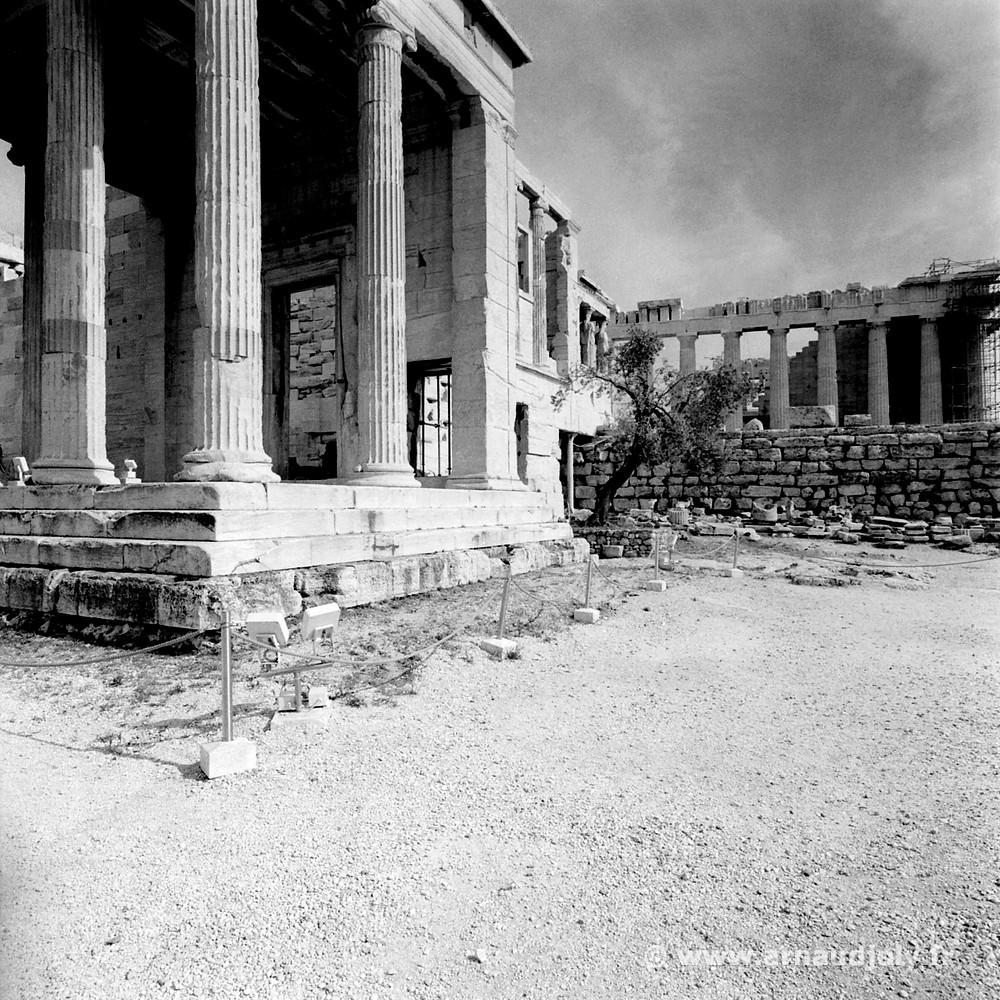L'Acropole d'Athène, film négatif Tri-X400 dupliqué numériquement