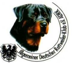 ADRK Helferprüfung bei der BG Ensdorf