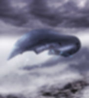 Svävaren Rimfrost i Norra Luftflottan