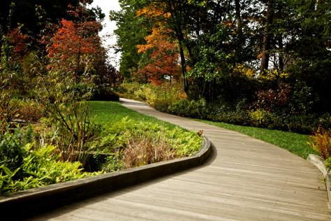 Entenda de vez a diferença entre paisagismo e jardinagem
