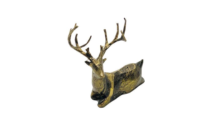 Buck the Deer