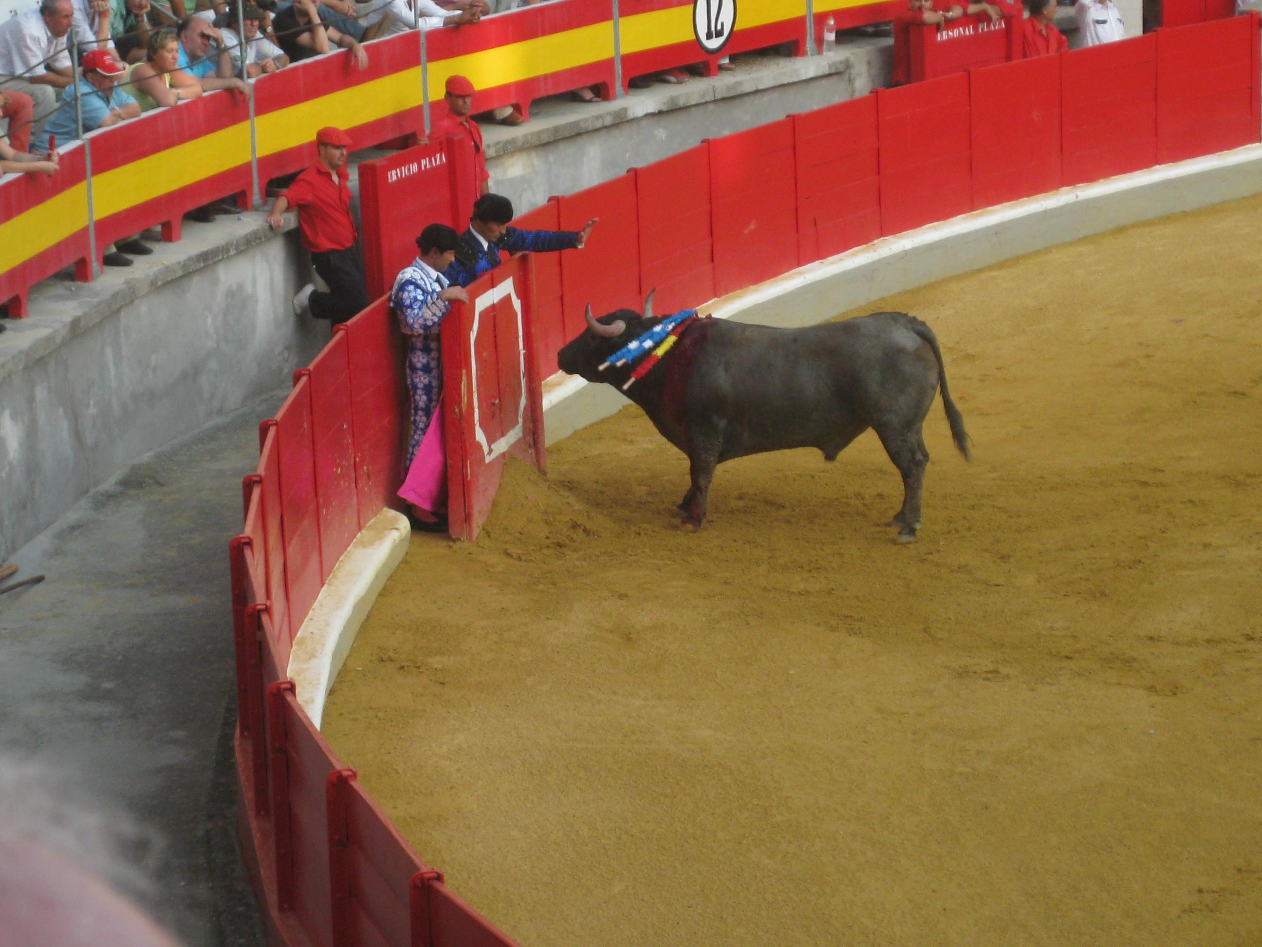Granada Spain Bullfight