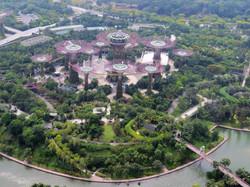 Singapore Marina Bay Sands Skypark view of supertree grove IMG_7799