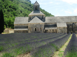 Sénanque Abbey, near Gordes, France