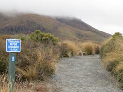 Tongariro hike start MM 2017-01-07 006